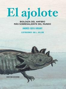 El ajolote. Biología del anfibio más